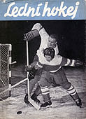 Lední hokej (kostka, zábrodský, tintěra) - bez obalu